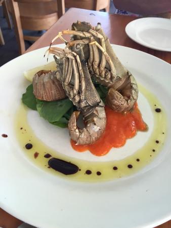 L'Unico Trattoria Seafood Restaurant: Entree - Morton Bay Bugs