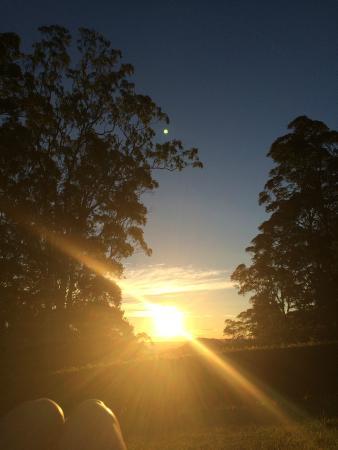 Mapleton Falls Accommodation: Sunset