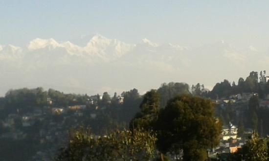 Hotel Pradhan: Views from room