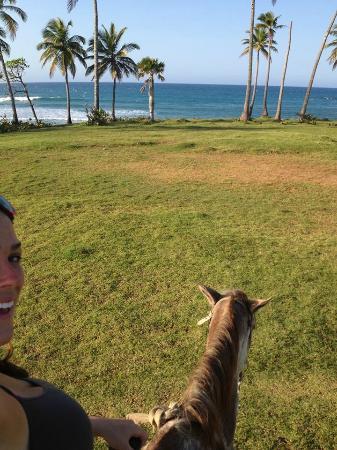 Кабарет, Доминикана: Sunset ride