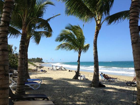 Кабарет, Доминикана: View from the Kite school