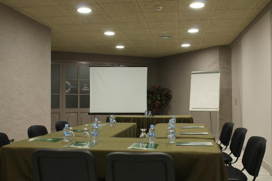 Hotel Jardí: Sala reuniones