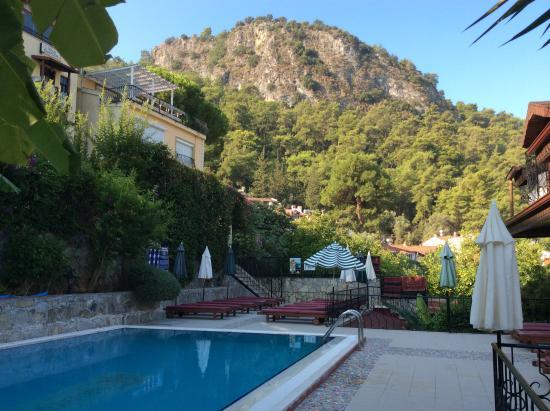Villa Daffodil: pool view