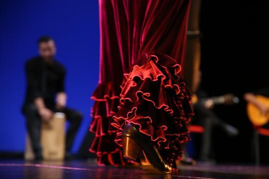 Gran Gala Flamenco - Picture of Barcelona y Flamenco, Barcelona - TripAdvisor