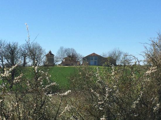Domaine de l'Isle Basse: Entorno privilegiado
