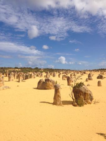 Kandu Holidays: Beautiful Pinnacles Desert