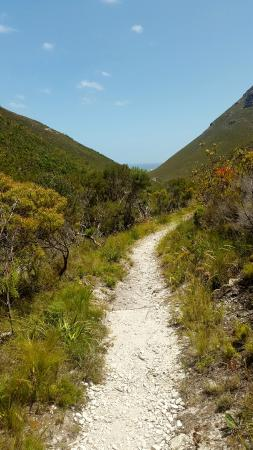 Hermanus, Sudáfrica: View of the ocean from the Fernkloof Hiking Trail