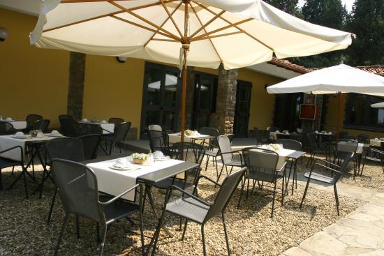 Villa dei Bosconi: Terrace