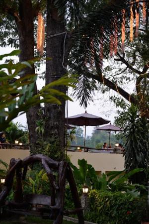 Oriental Kwai Resort: nature
