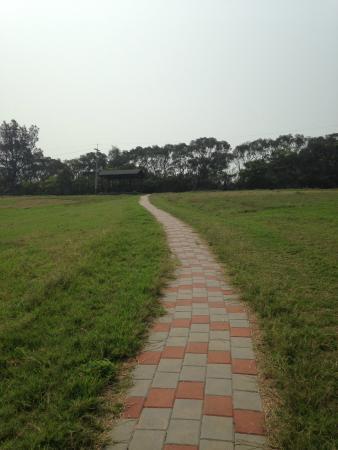 19 Hectares Grassland