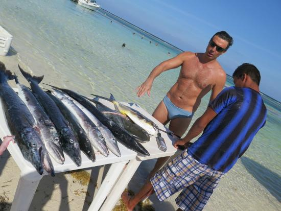 Pez Quadro Beach Club: some barracuda that will be in the plate shortly