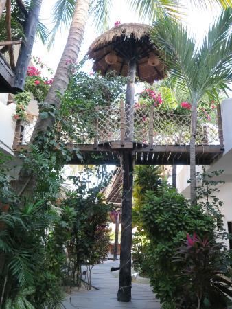 Pez Quadro Beach Club: aspect of this Hotel Restaurant