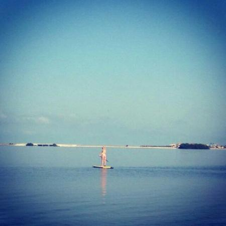 Kostal Paddle Boarding At Sunset Beach Florida With Enterprises