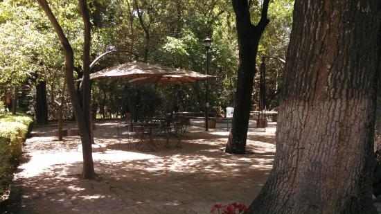 El Marqués Hacienda Hotel: recepcion