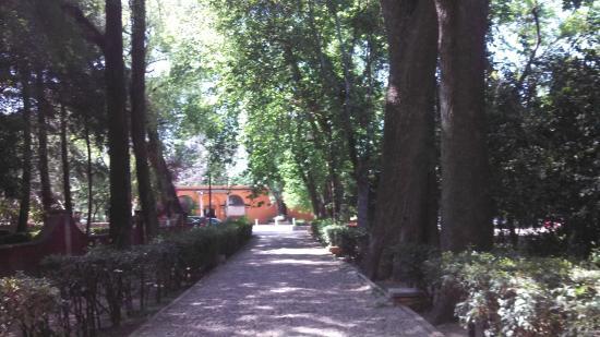 El Marques Hacienda Hotel: camino al comedor