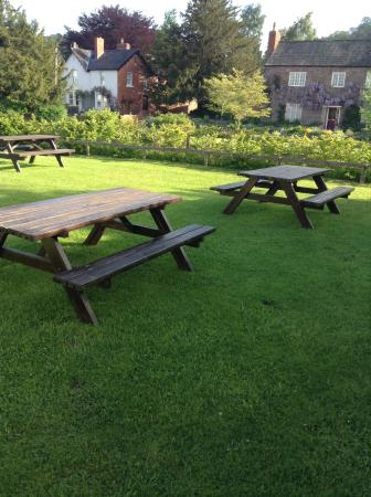 Fownhope, UK: Beer Garden