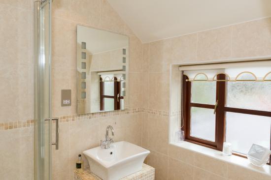 Tyn Rhos Country House: Standard Room Bathroom