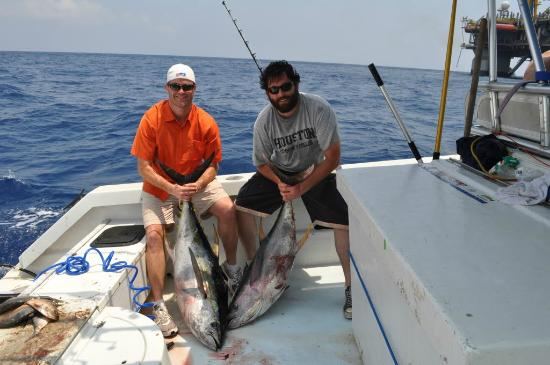 Double yellowfin tuna with fish commander picture of for Grand isle fishing charters