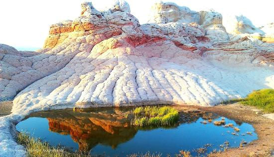 Kanab, UT: Reflection Pool White Pocket