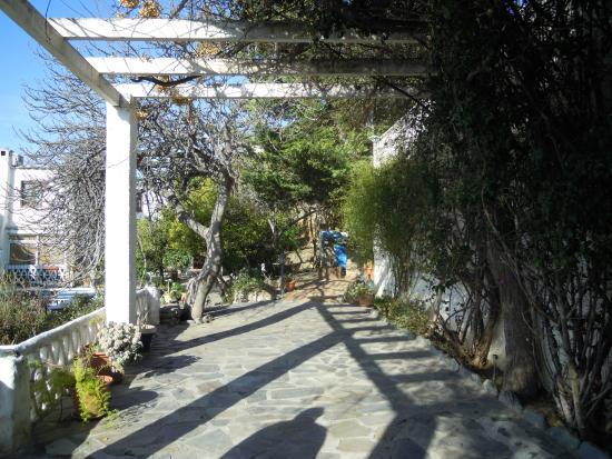 Casa Jazmin: Entrada interior hacia la casa