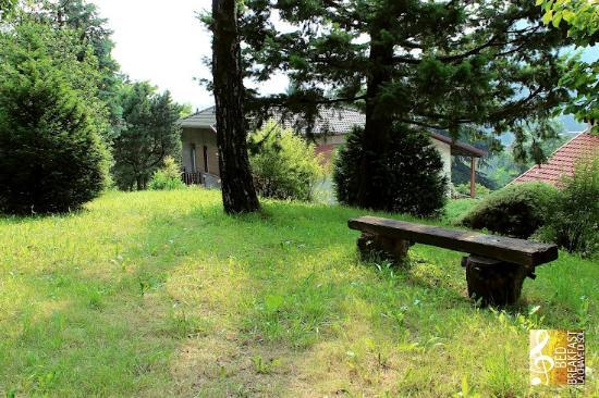 B&B La Chiave di Sol: Il giardino