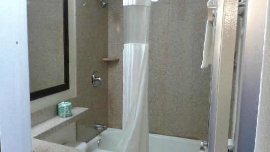 هوارد جونسون اكسبرس أرلينجتون: Bathroom