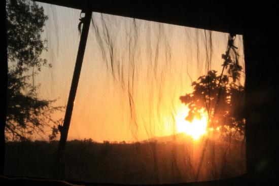 Haven Nature Camp and Lodge: Sunrise view from our tent.