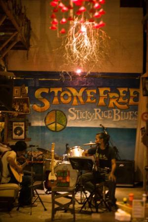 Stone Free: Музыканты