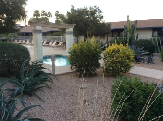 Arizona Royal Villa Resort: Jaccuzzi
