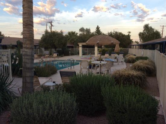 Arizona Royal Villa Resort: Pool Area