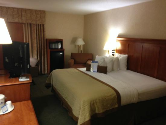 Wingate by Wyndham Greenville : Room King size, MIcrowave and Fridge