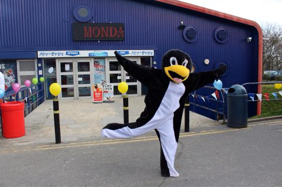 Silver Blades Ice Rink: Percy the Penguin at Fun Day 2015!