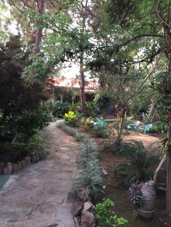 The Golden Gate Resort Guest House: Hotelgarten