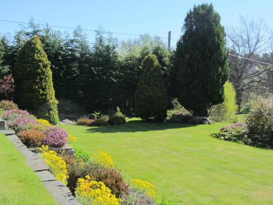 Rossmor Guest House: Front garden