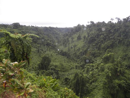 Fuipisia Waterfall: el valle