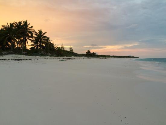 Greenwood Beach Resort: Pic of Beach