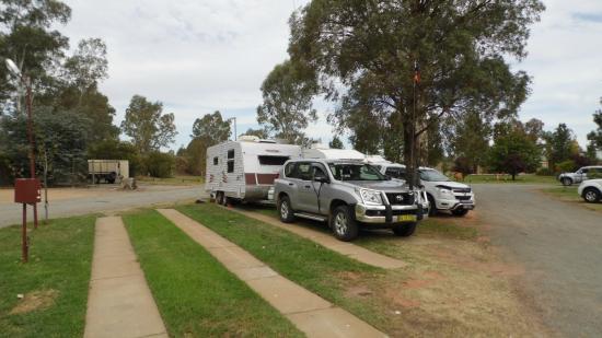 drive thru site at Narrandera Caravan Park