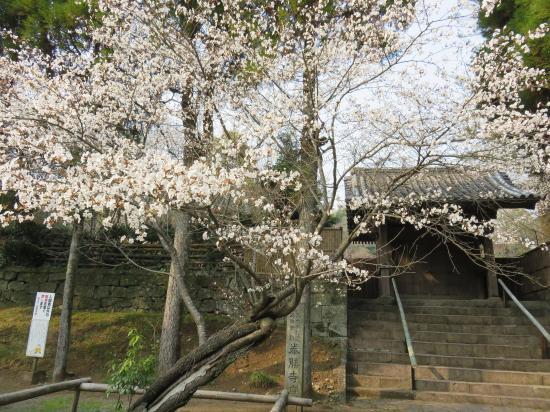 Tatsuta Natural Park: 泰勝寺跡石碑