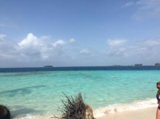 Estrella de mar piscinas naturales sanblas picture of for Piscina de san blas