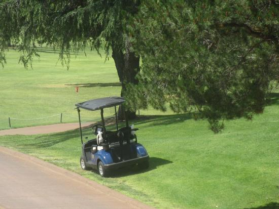 Boundary Oak Golf Course