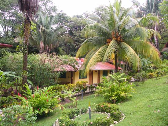 Giardino Tropicale: jardines