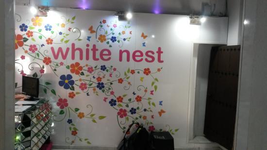 White Nest Hostel Granada: Front Desk