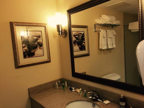 هوليداي إن - ستايتسبورو يونيفيرسيتي إريا: Bathroom- good counter space. The soap, shampoo, mouth rinse, conditioner, and lotion was of goo
