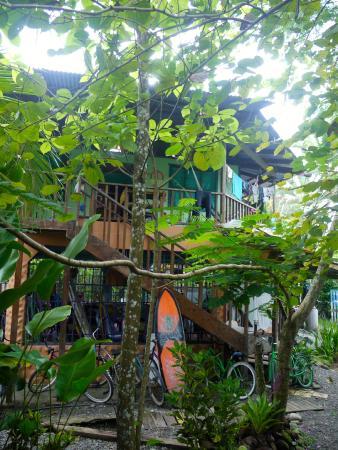 La Ruka Hostel: hostel grounds near reception
