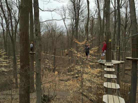 Go Ape Treetop Adventure Course: On the Course