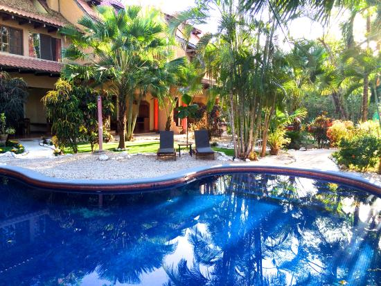 Photo of Hotel el Manglar Tamarindo