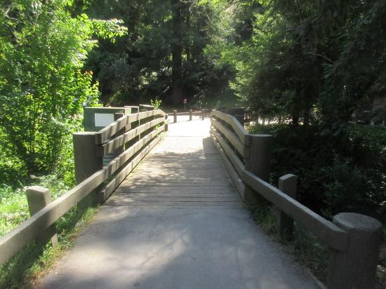 Walking path temescal regional recreation area oakland for Lake temescal fishing