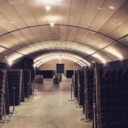 Wine & Food Lovers' Tours: Learning about the wine riddling process