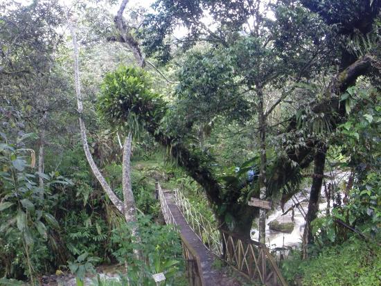 Los Jardines de Mandor: Dans le parc Mandor