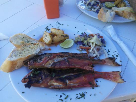 Playa Caribe : pescado bien fresco!!!